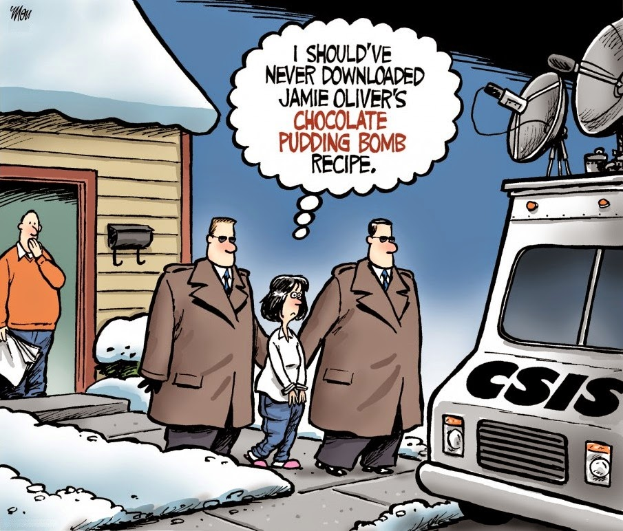 Theo Moudakis: CSIS only chases serious criminals.