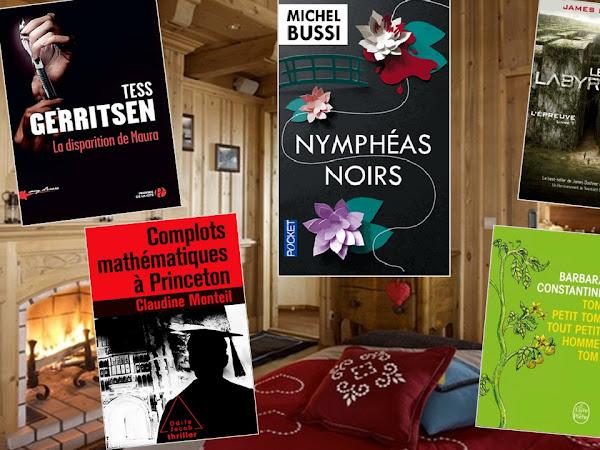 5 idées de lecture pour les soirées d'hiver