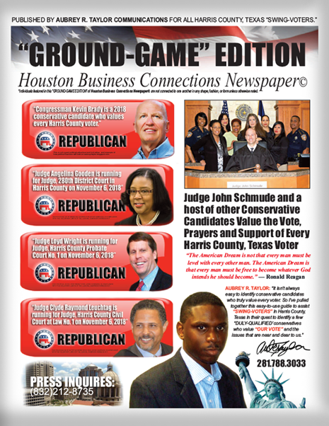 JUDGE JOHN SCHMUDE AND OTHER CONSERVATIVES WHO VALUE THE VOTE OF EVERY HARRIS COUNTY VOTER!