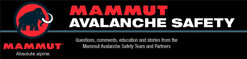 Image result for mammut snow safety workshop
