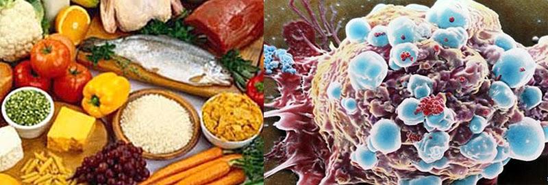 Kanser ve Beslenme