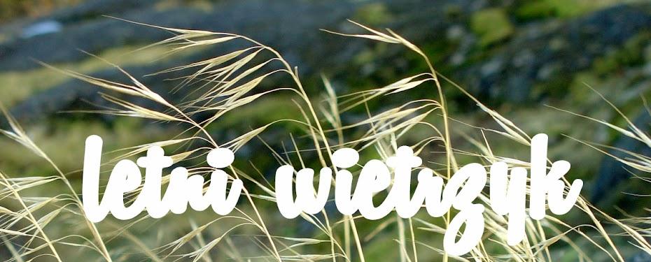Letni Wietrzyk