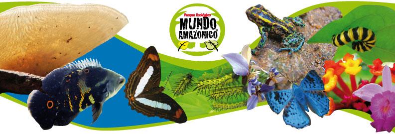 Amazonia Park