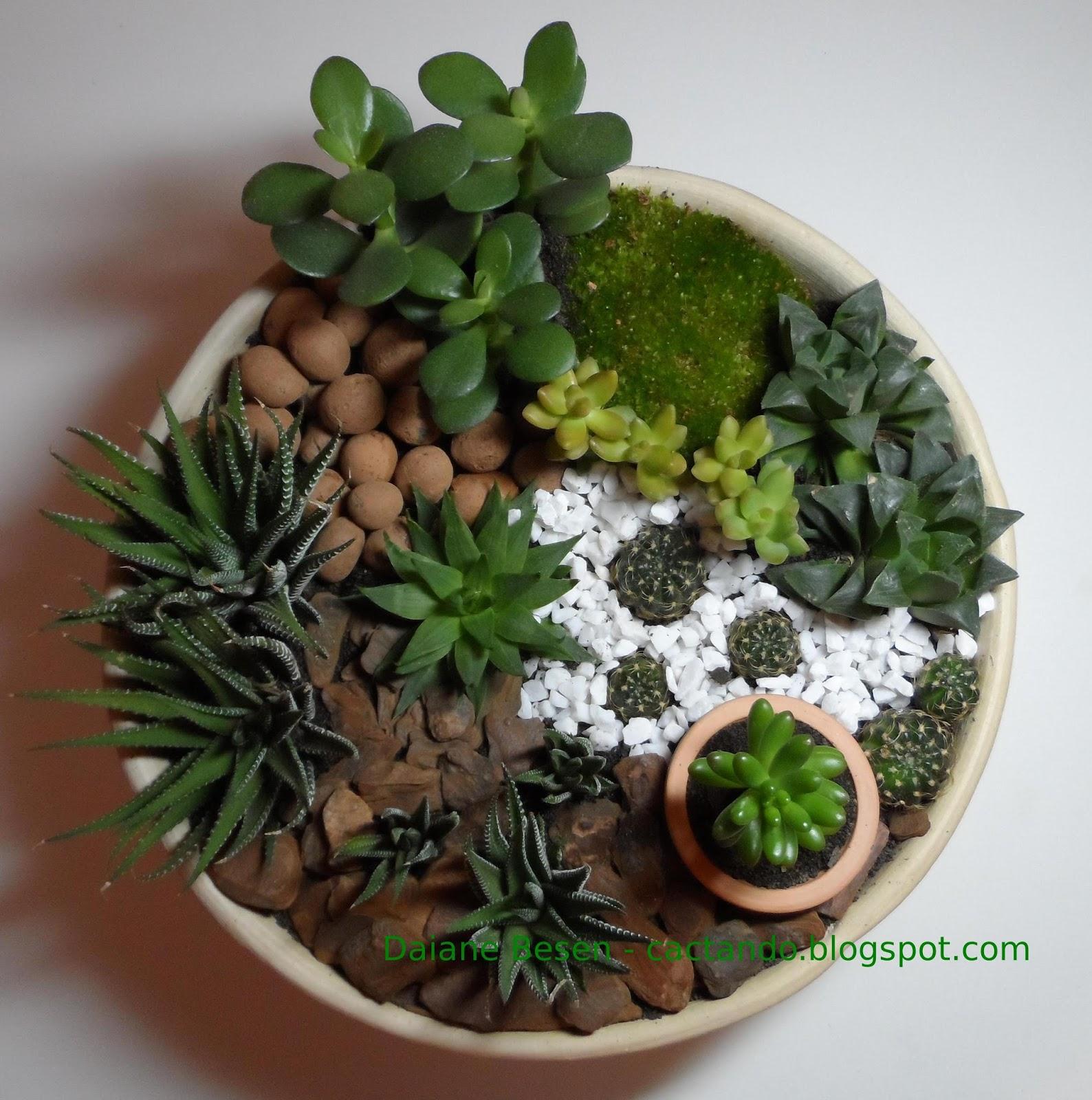 demorou mas fiz um mini jardim em um vaso de cerâmica não podia