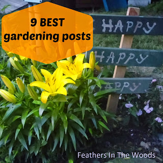 Feathers in The Woods: 9 best gardening posts