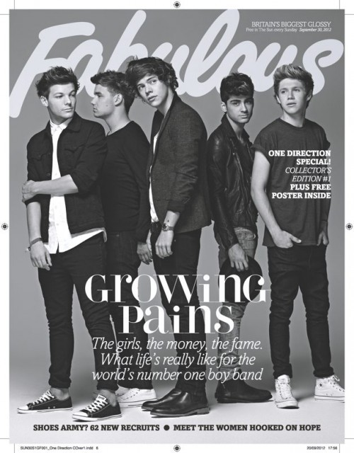 ONE DIRECTION (1D) - FULL BAND Cover - The Sun NEW - Fabulous 1 Day Only UK Mag