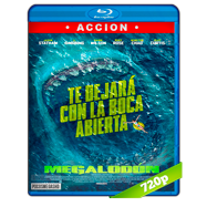 Megalodón (2018) BRRip 720p Audio Dual Latino-Ingles