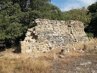 Restes de murs del mas Sabruneta, arran del camí