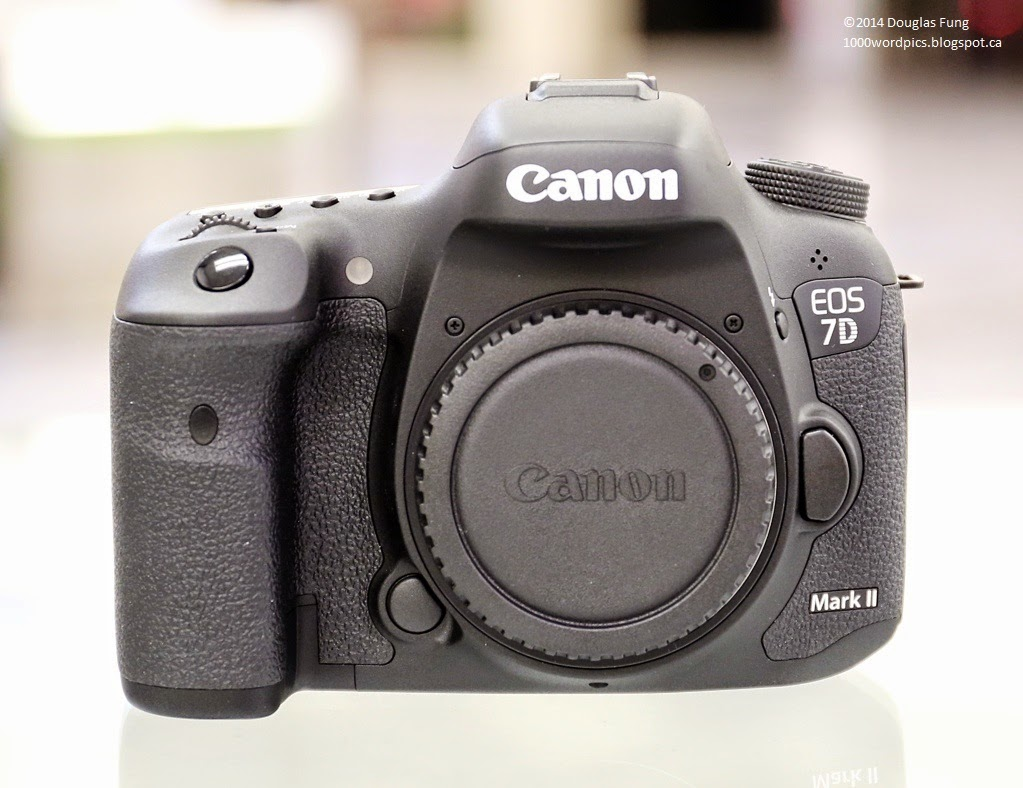 A Thousand Words A Picture: Canon EOS 7D Mark II Review