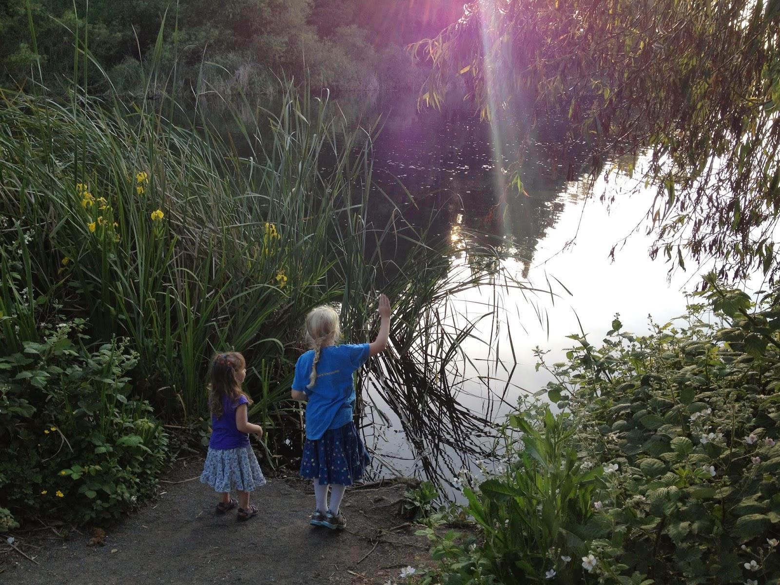 Lakeside by Lake Temescal, Temescal Regional Recreation Area by Rachel Medanic