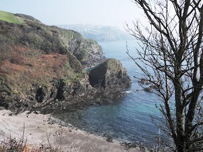 Cliffs at Menabilly Cornwall