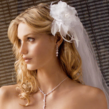 FASHION AND LIFE STYLE Bridal Hairstyles With Veil