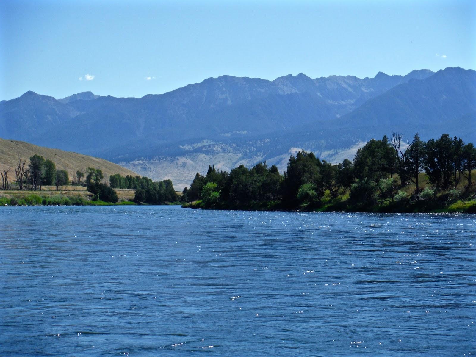 Erik s fly fishing blog back on the yellowstone river for Fly fishing yellowstone river