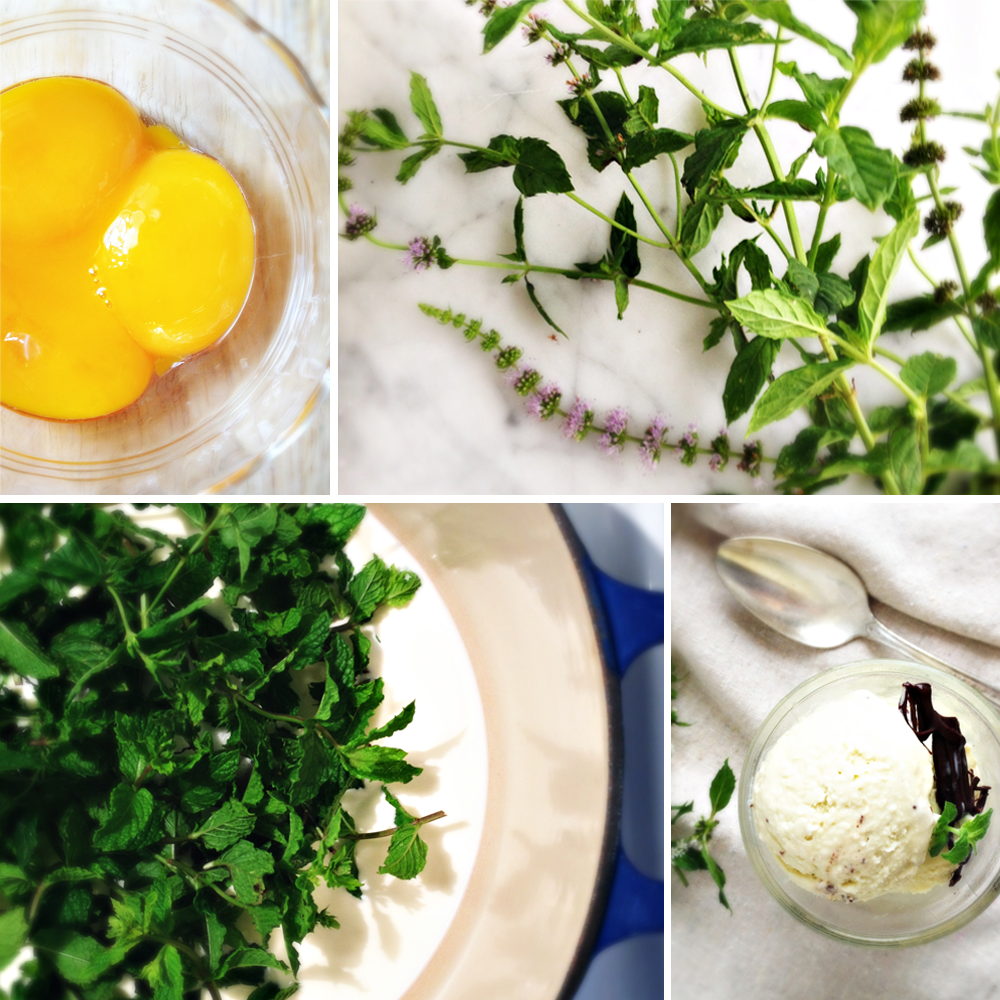 eggs, fresh mint, mint chocolate chip ice cream