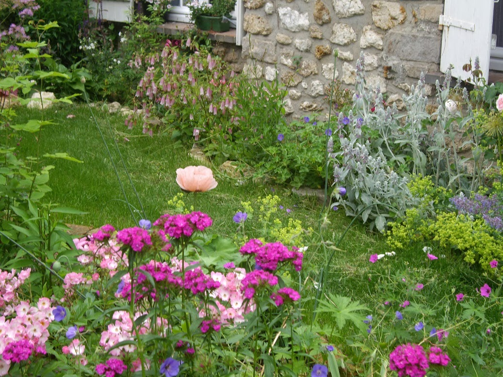 derriere les murs de mon jardin