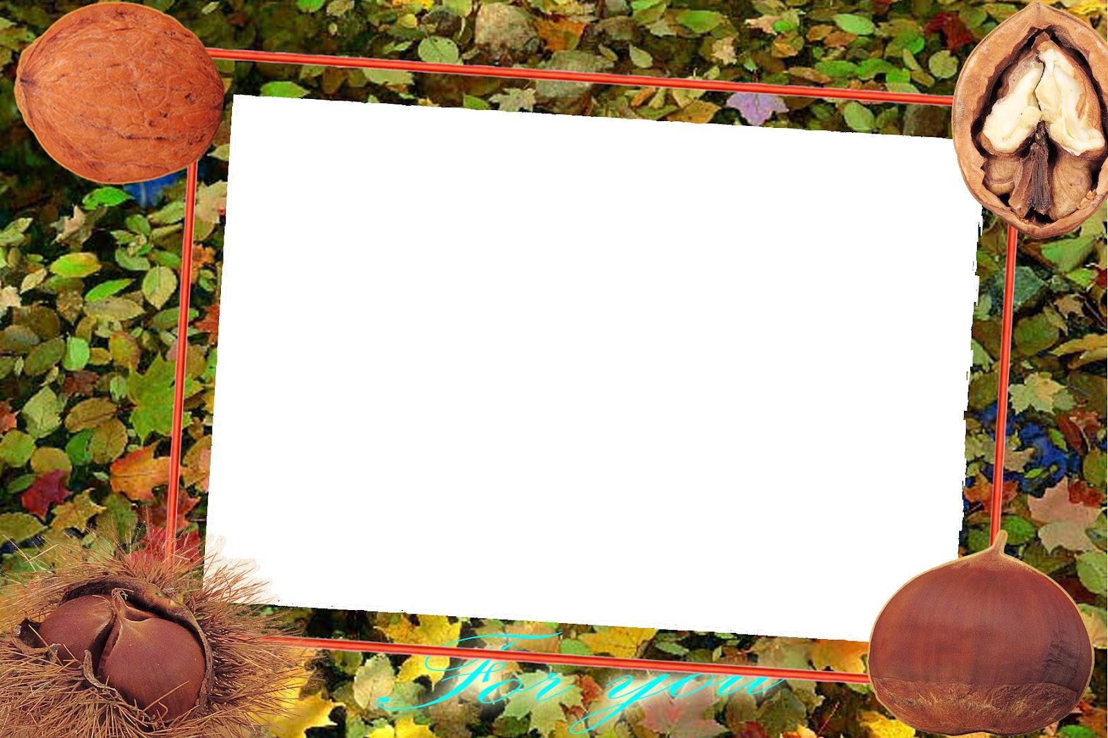 Edit foto frame online gratis 93