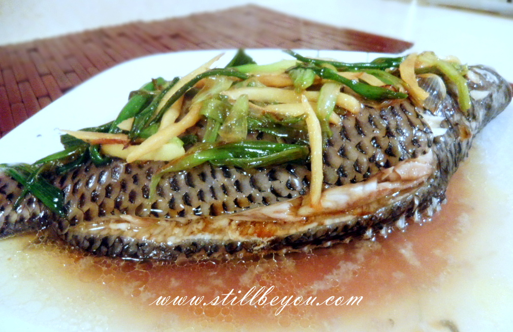 ginger and scallion fish boil and trouble steamed fish with scallion ...