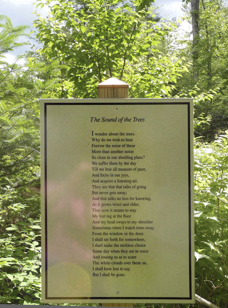 the theme of nature in the road not taken and symbolism in stopping by woods poems by robert frost Stopping by woods on a snowy evening  one of the prominent european american poems is robert frost's stopping by  robert frost's the road not taken and.