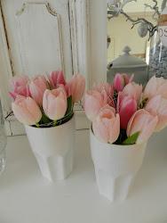 Tulpen - meine Lieblingsblumen