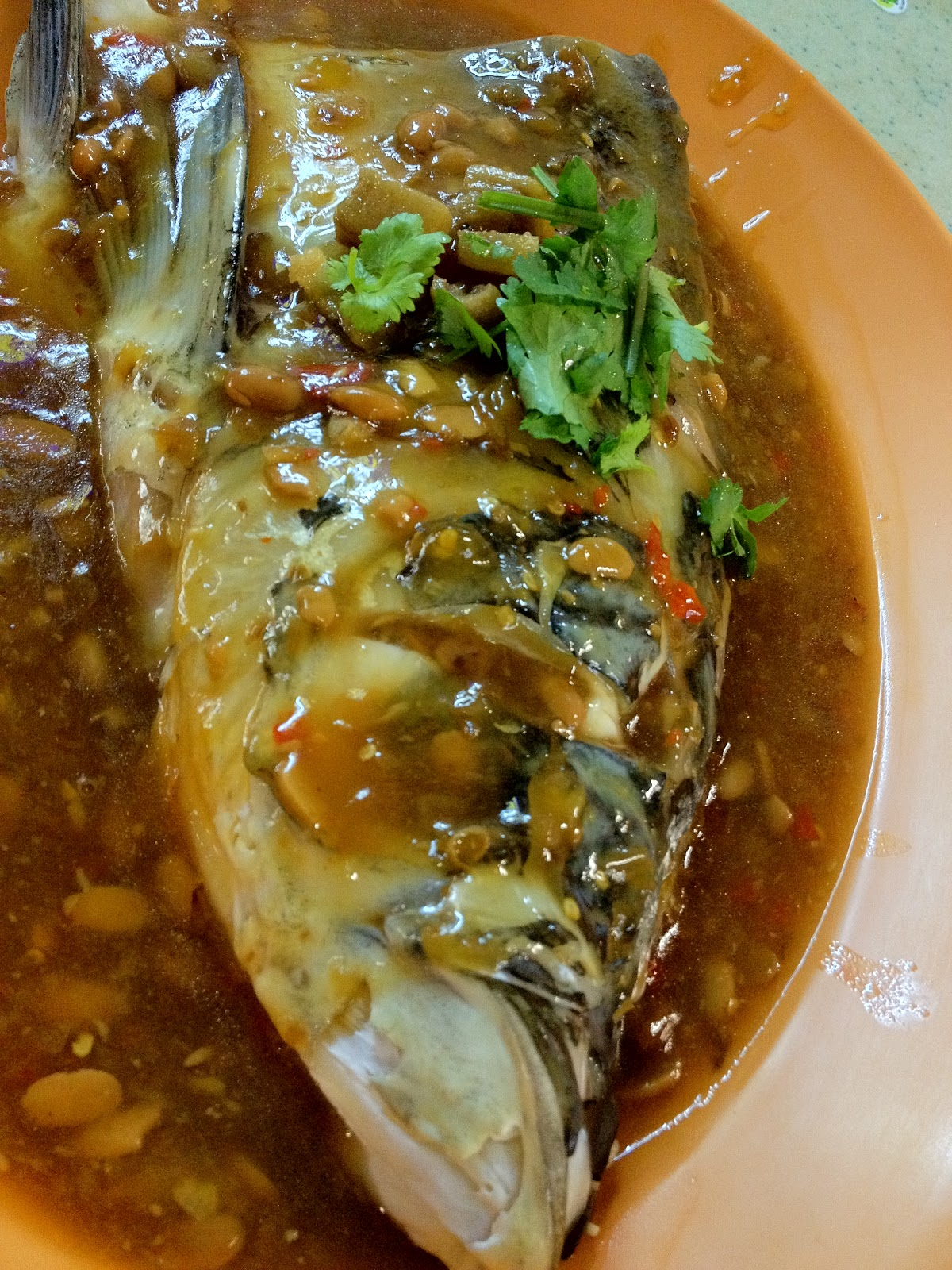 Hungry spot steamed fish head in black bean sauce chinatown for Fish in black bean sauce