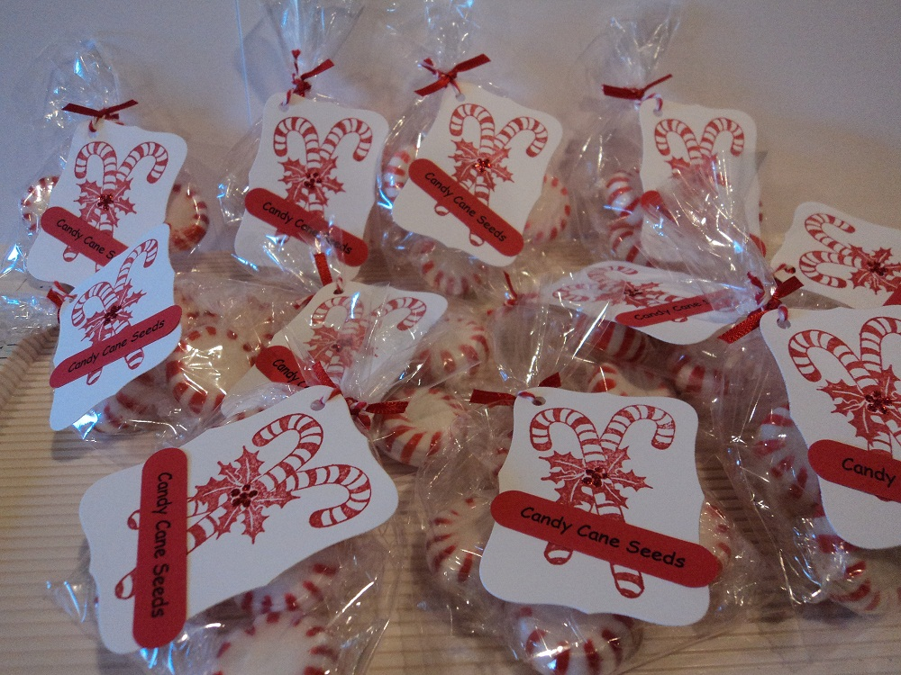 Card Corner By Candee Candy Cane Seeds