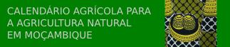 Calendário agrícola