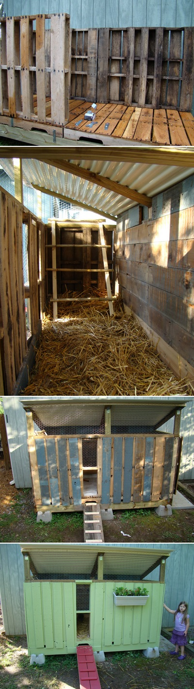 A pallet chicken coop animals forums for How to build a chicken coop from wooden pallets