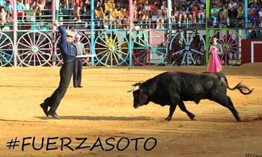 FUERZA SOTO TOREO DE ALMA.