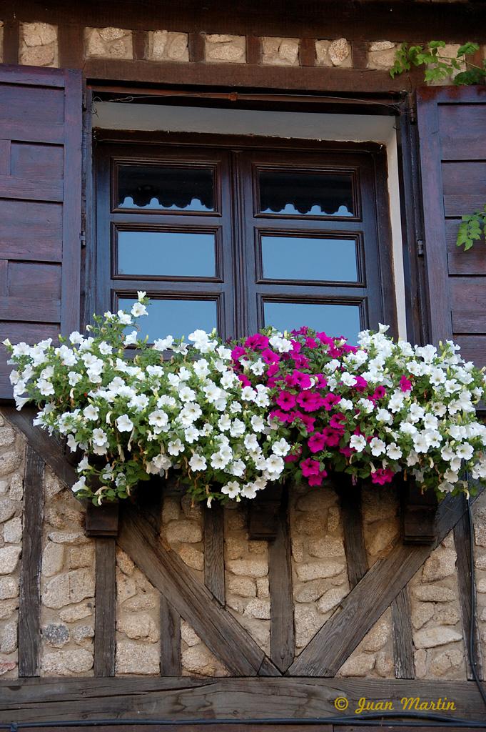 Candelario la alberca y mogarraz balcones y flores de la for Balcones con plantas