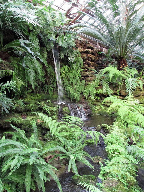 Waterfall, Fern Room, Garfield Park Conservatory