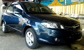 Proton flx 1.3 Blue Rock