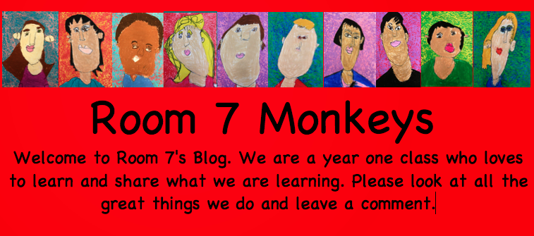 Room 7's Monkeys