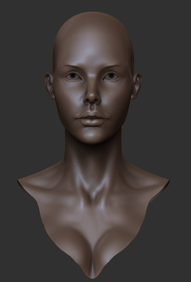 female+bust+3-24-13.png