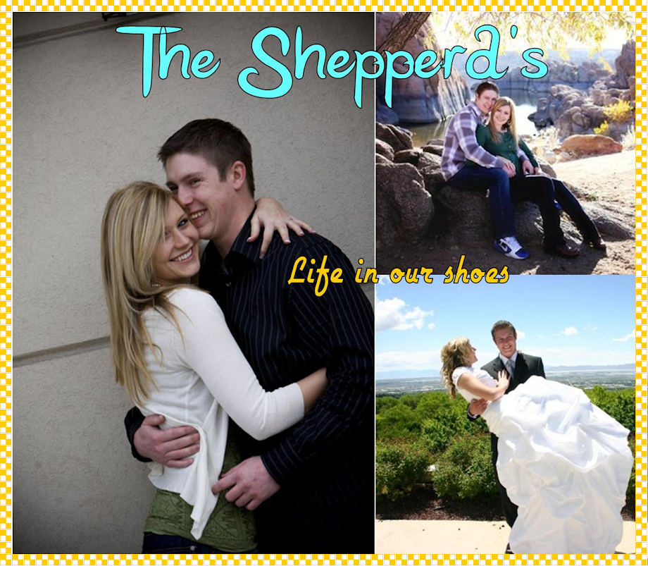 The Shepperd&#39;s