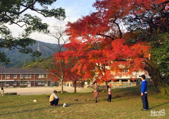 Collège d'Akizuki