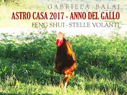 Astro Casa 2017 di Gabriela Balaj [e-book]