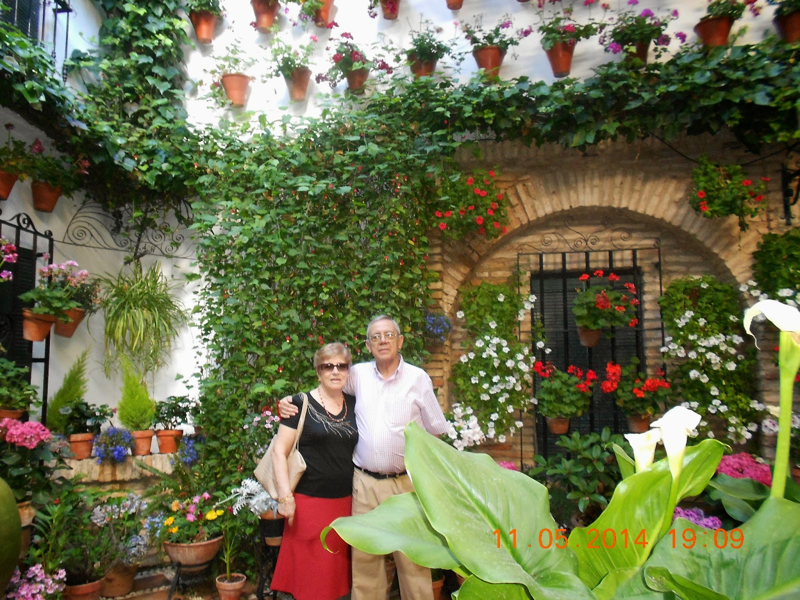 Viajes viaje cultural a c rdoba y provincia del imserso - Plantas para arriates ...