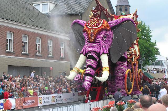 مهرجان الزهور والورود هولندا وتمييز