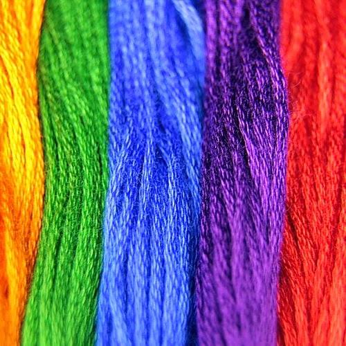 varian color macro photograph