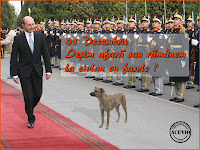 Funny photo Traian Basescu Decembrie