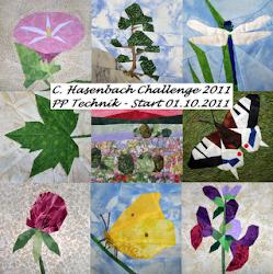 PP Challenge 2011