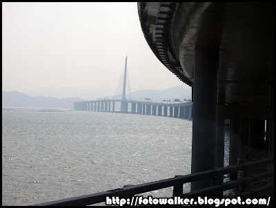 深圳灣公路大橋 (Shenzhen Bay Bridge)
