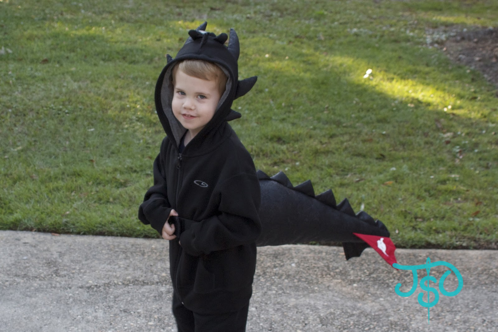 justsewolivia: today's photo journal: dragon and shark costumes debut
