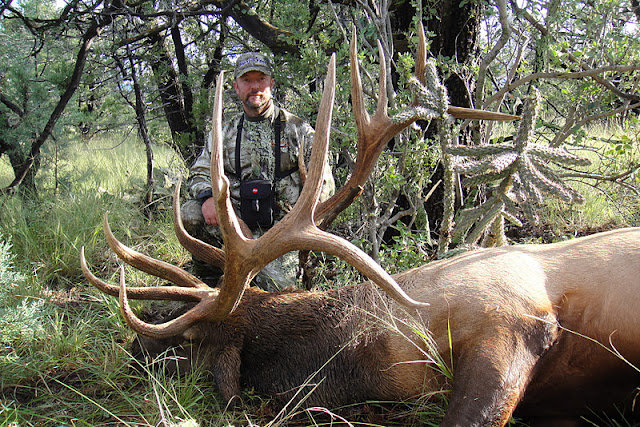 Todd Brooks Arizona Archery Elk Picture with Colburn and Scott Outfitters 3