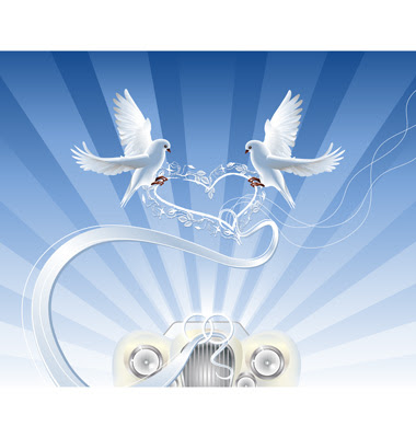 Colour wedding doves wedding plans galleries