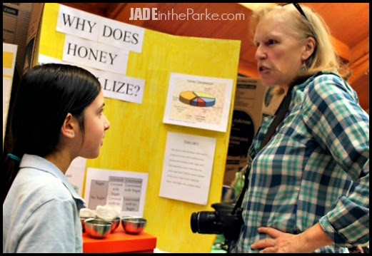 http://www.jadeintheparke.com/2014/02/what-do-science-fair-projects-say-about.html