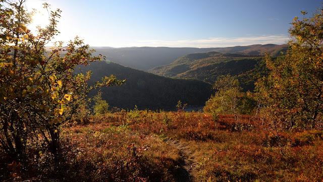 far-reaching view from Mt. Negus