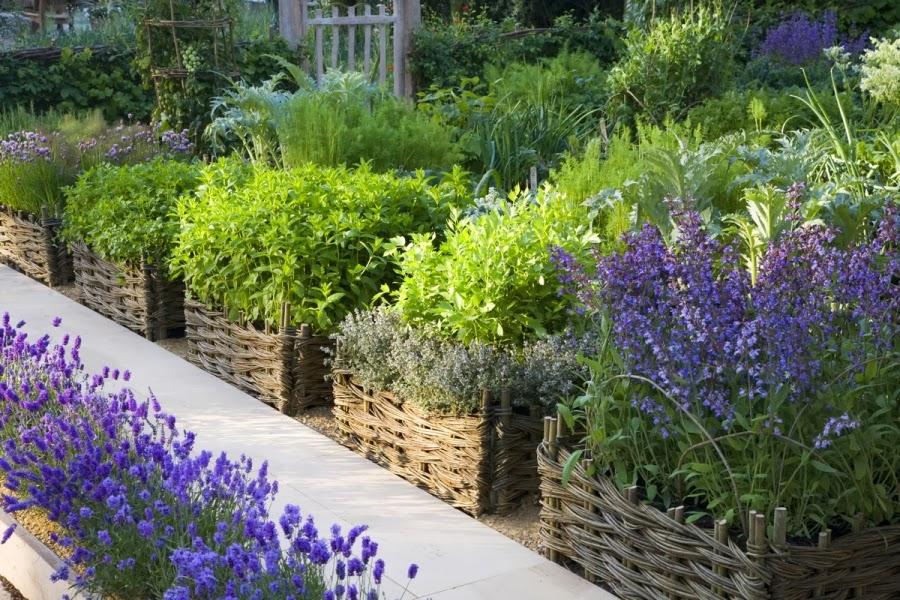the garden vegetable gardens