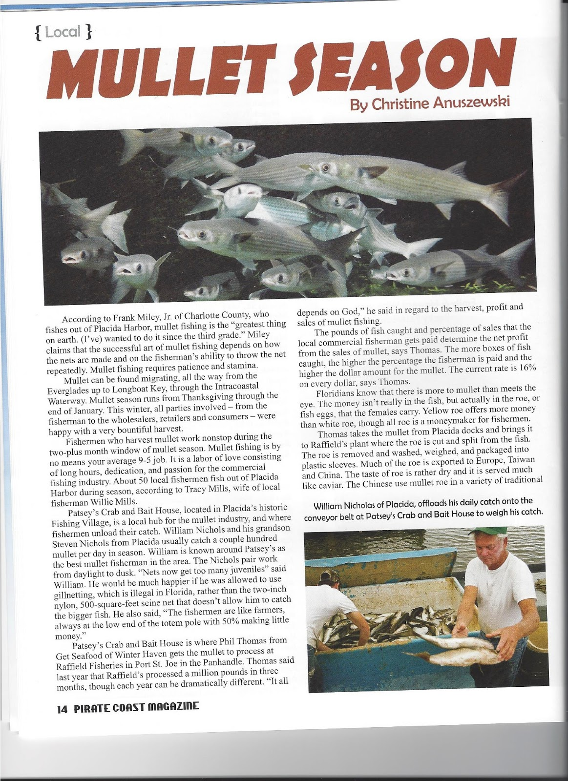 Mullet fishing gearing up for season for Mullet fish florida