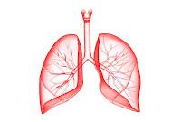 Remedios para Los Pulmones